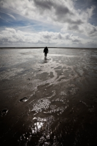 the Wadden Sea - UNESCO World Heritage Site