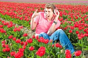 Dutch music hits