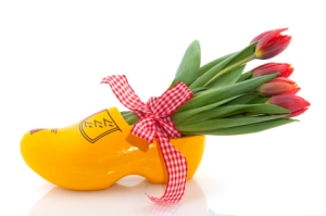 Dutch tulips and clogs