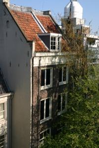 Anne Frank tree