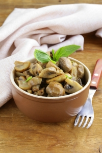 Dutch recipe for game ragout with mushroom