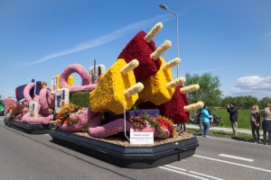 Dutch flower parades
